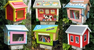 Examples of little free libraries.